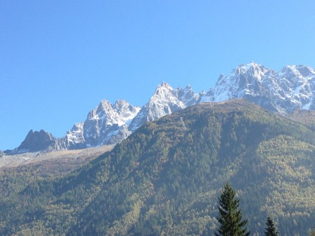 The forest leading to the mid station on the midi, with the Chamonix aiguilles in the background